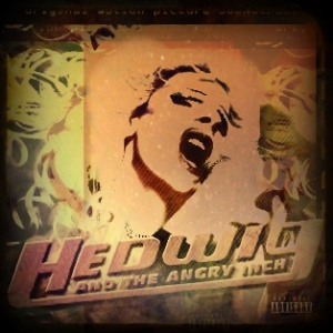 BeFunky_hedwig_and_the_angry_inch
